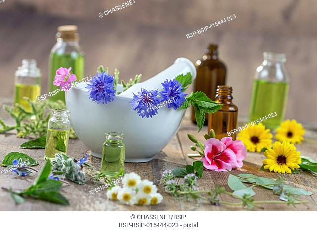 essential oils for aromatherapy treatment with fresh herbs in mortar, and essential oik bottle on the back on bleue wooden board background