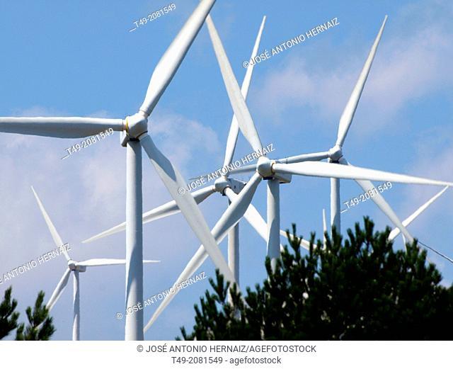 Windfarm, La Rioja, Spain