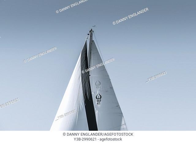 Minimalist view of a sail from a sail boat with a blue sky in the background