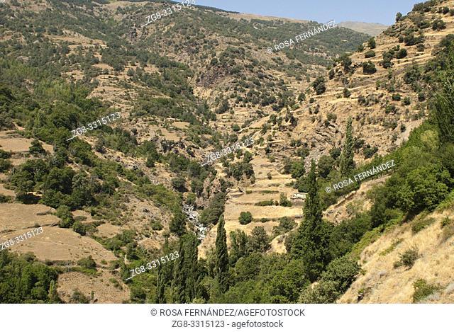 Valley of Poqueira River and landscape of La Alpujarra, Bubion, province of Granada, Andalucia, Spain