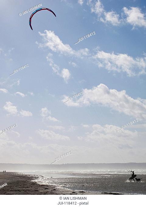 Kite Surfer With Dog On Beach Shoreline