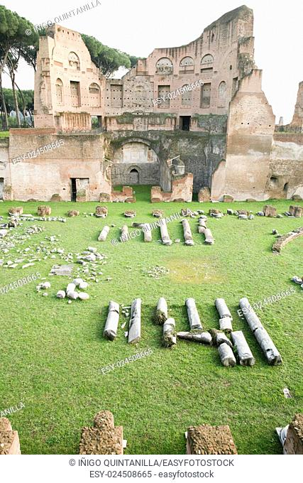 ruins of the ancient roman Stadium or Hippodrome of Domitian, in Palatine hill, in Rome, Italy, Europe