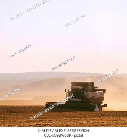 Combine harvester harvesting dusty wheat field