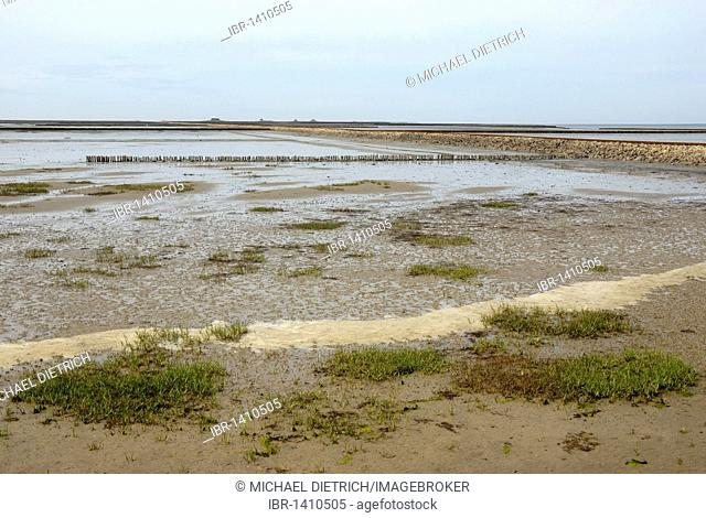 View over the mud flats at low tide, breakwaters and trolley causeway to Nordstrandischmoor island, Nationalpark Schleswig-Holsteinisches Wattenmeer