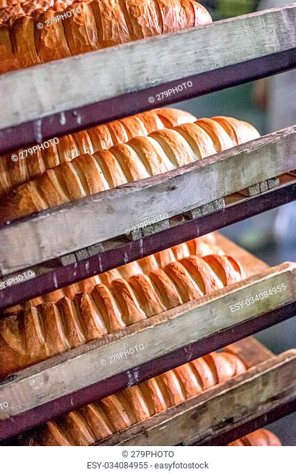 A lot of bread on the shelf at bread factory