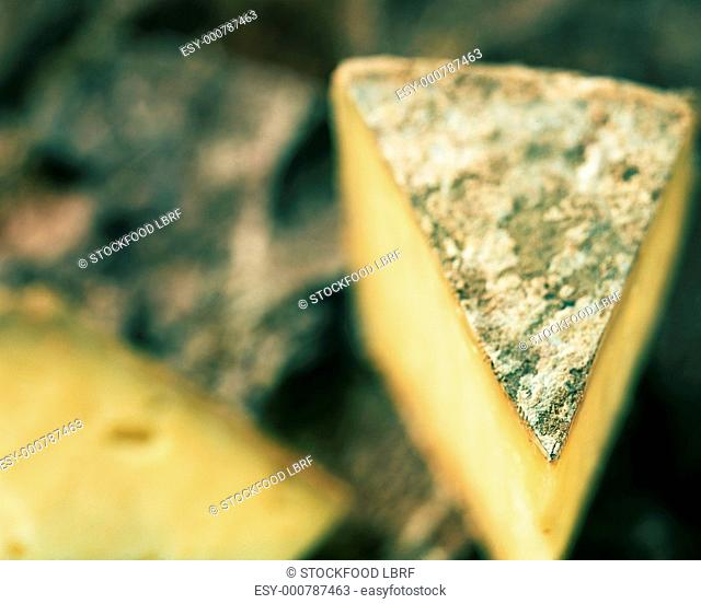 Piece of Tomme cheese from France