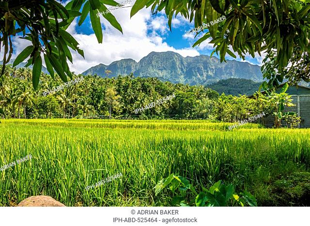 Philippines. Leyte. Baybay. Beautiful scenery near the port town of Baybay
