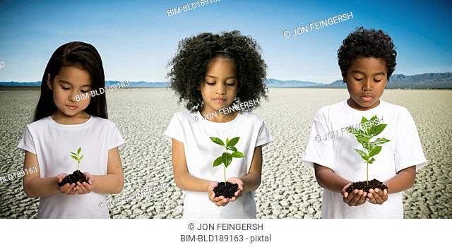 Children holding seedlings in desert