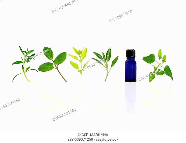 Aromatherapy Essential Oil Herbs