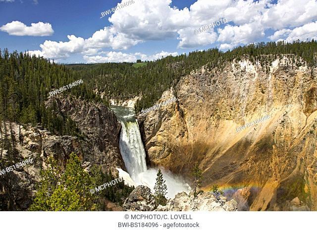 LOWER YELLOWSTONE FALLS drop into the Grand Canyon, USA, Wyoming, Yellowstone National Park
