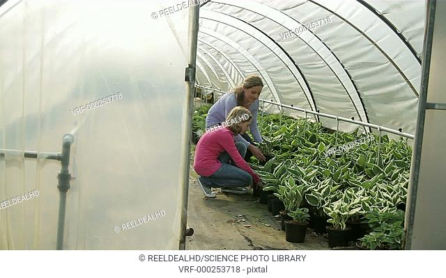 Mother and daughter looking at plants in a greenhouse in a garden centre