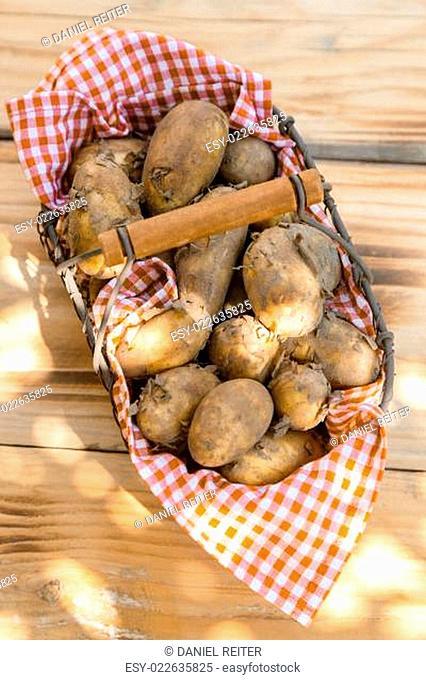 Metallic basket full of fresh new potatoes