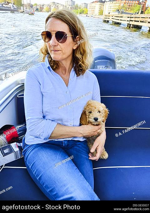 Stockholm, Sweden A woman holds a bichon poo poddle puppy in her arms while on a motorboat