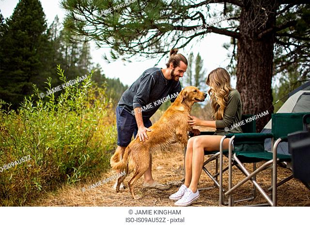 Young couple petting dog at campsite, Lake Tahoe, Nevada, USA