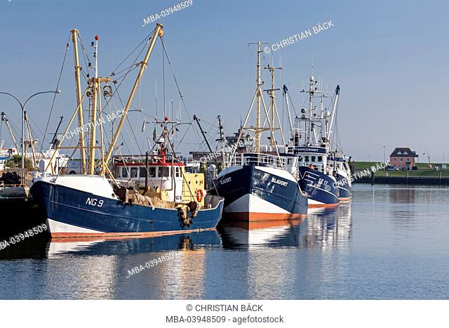 Fishing trawler in the harbour, Büsum, Ditmarsh, Schleswig - Holstein, North Germany, Germany