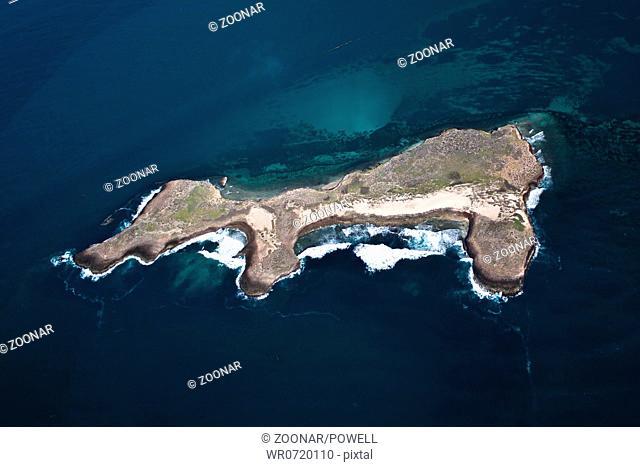 Island, dog, aerial photo, lonely, fantasy