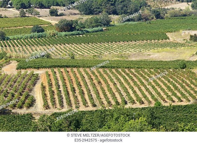Herault River valley vineyards looking North towards Alignon du Vent from Valros, France