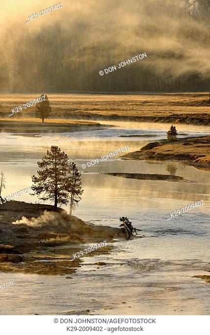 Morning mists on the Yellowstone River near the Mud Volcano, Yellowstone NP, Wyoming, USA
