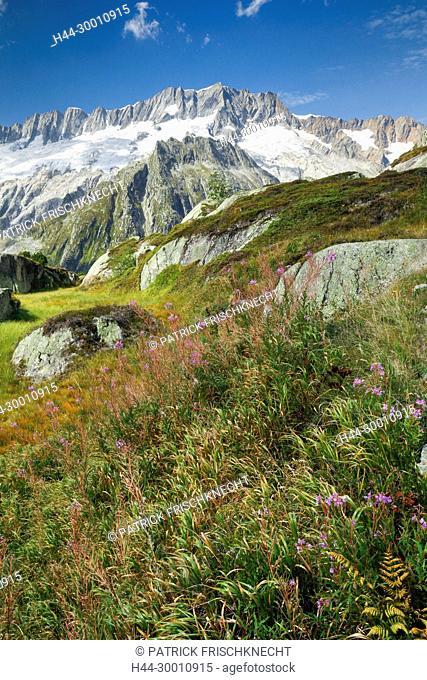 Dammastock, 3630m, Göscheneralp, Uri, Schweiz