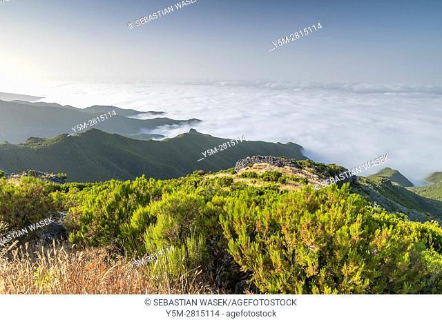 A trail to the Pico Ruivo Summit, Achada do Teixeira, Madeira, Portugal