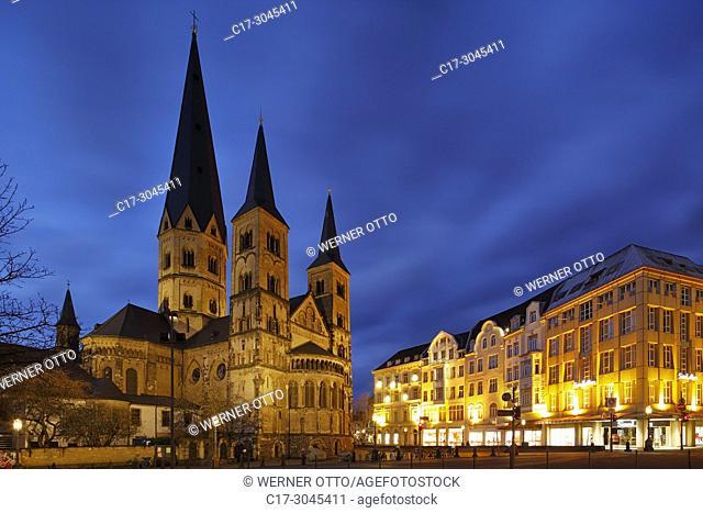 Bonn, D-Bonn, Rhine, Sieg, Kottenforst, Rhineland Nature Park, Rhineland, North Rhine-Westphalia, NRW, Bonn Minster, catholic church