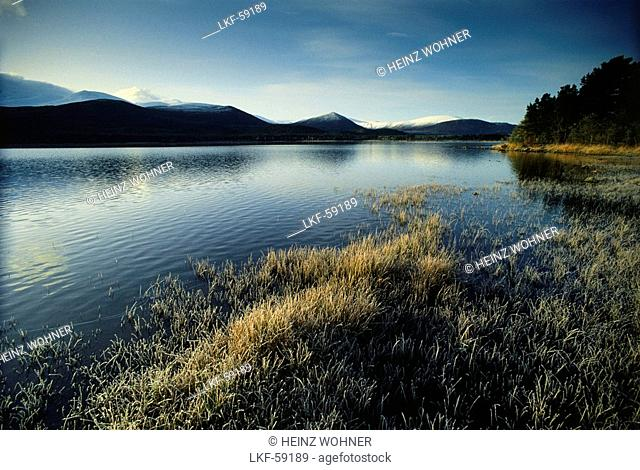 View of Loch Morlich, Cairngorm Mountains, Highlands, Scotland, Great Britain
