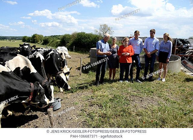 Angela Merkel visits the dairy farm of the Trede family. Nienborstel, 19.07.2018 | usage worldwide. - Nienborstel/Schleswig-Holstein/Deutschland