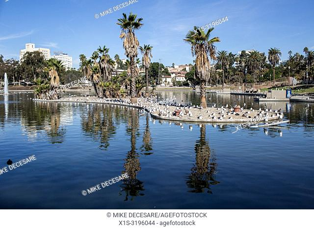 MacArthur Park in LA's Westlake neighborhood dates back over a century and was the title of an iconic rock 'n roll hit in the 1960s