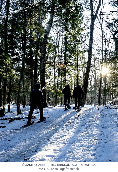 Snoeshoers hiking in Peninsula State Park in Door County Wisconsin