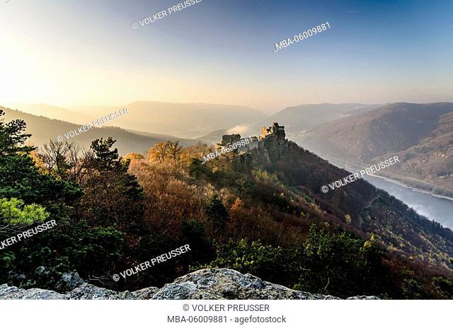 Castle ruin Aggstein over the Danube in the morning light, Austria, Lower Austria, Wachau, Schönbühel-Aggsbach