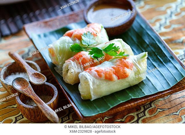 Goi cuon or fresh spring rolls. City of Yogyakarta, Java island, Indonesia, Asia