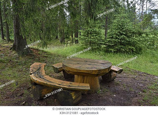 picnic area in Chocholowska Valley, near Witow, Podhale Region, Polish Tatra mountains, Malopolska Province (Lesser Poland), Poland, Central Europe