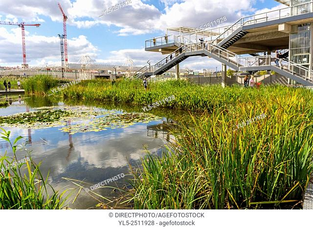 Paris, France, New Modern Architecture Project, Garden Martin Luther King, Neighborhood, Eco-Quartier Clichy-Batignolles, with Pond, Water Recycling Project