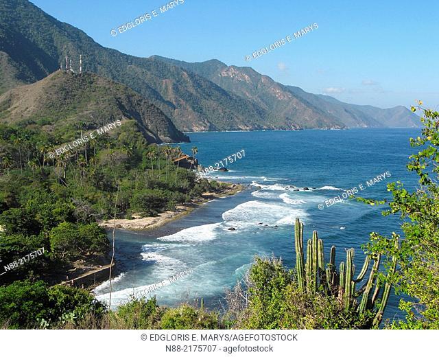 Caribbean sea Choroni Venezuela