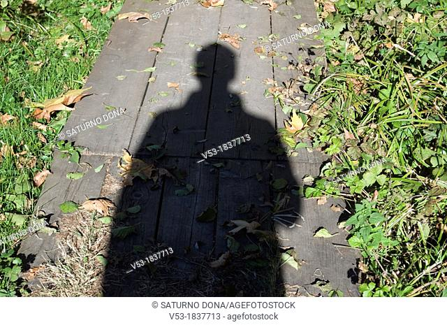 Silhouette of a person on wooden walkway