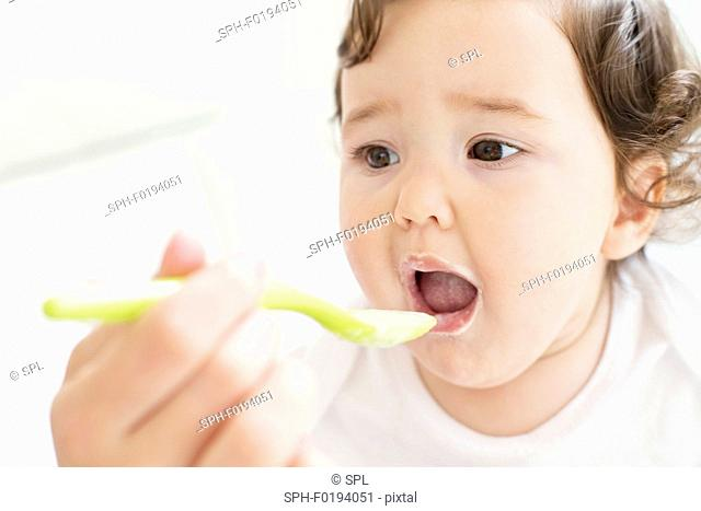 Female toddler being spoon fed