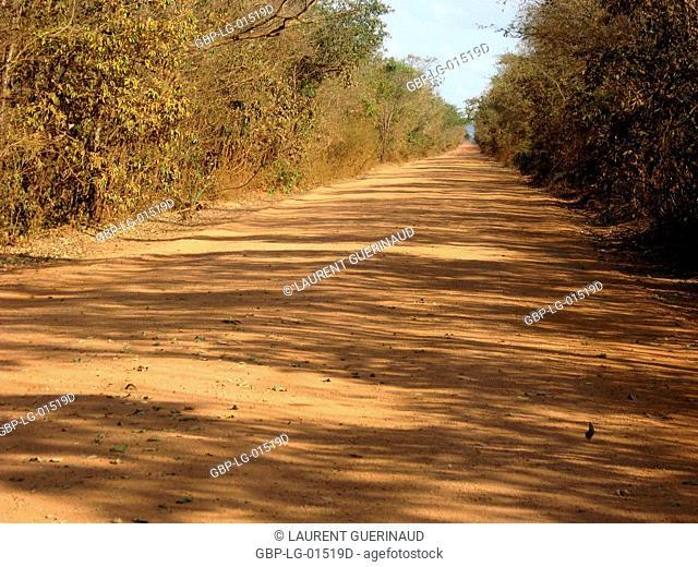 Dirt road, Bonito, Mato Grosso do Sul, Brazil