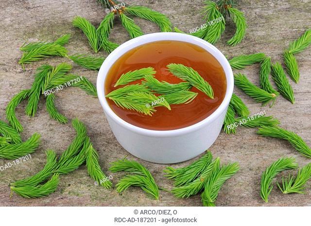 Norway Spruce tip honey, Picea abies