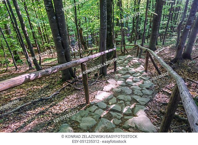 Tourist trail in Wolosate villlage, route to Tarnica peak in the Bieszczady Mountains in southern Poland, view from a path to Tarnica peak