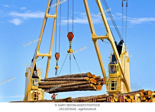 Ship mounted cranes lifting logs from dock onto log ship for transport to China; Port of Port Angeles, Washington USA