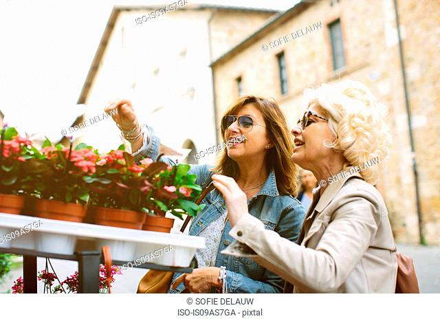 Two mature female friends looking at pot plants, Tuscany, Italy