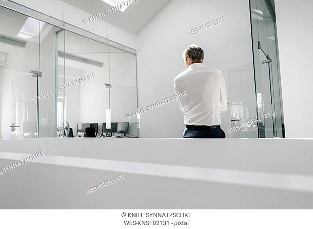 Rear view of mature businessman in bright office