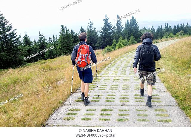 Germany, Harz, Brocken, back view of two friends hiking