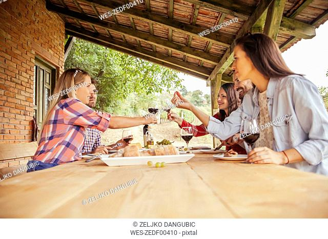Friends clinking red wine glasses at table in vineyard