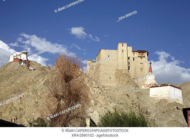 Leh Palace, Leh, Ladakh, India