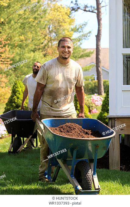 Landscapers carrying mulch to a garden in wheelbarrow