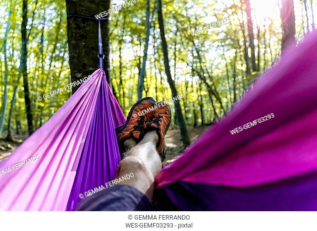 Point of view shot of man lying in hammock in a forest