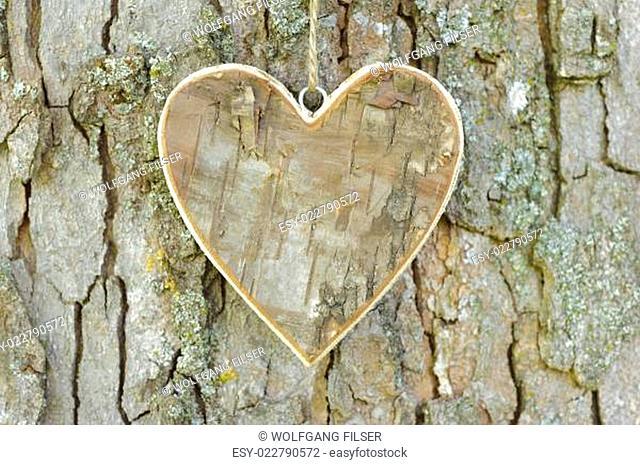 Herz am Baumstamm