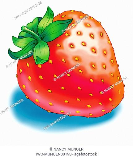 A Single Strawberry with Shadow