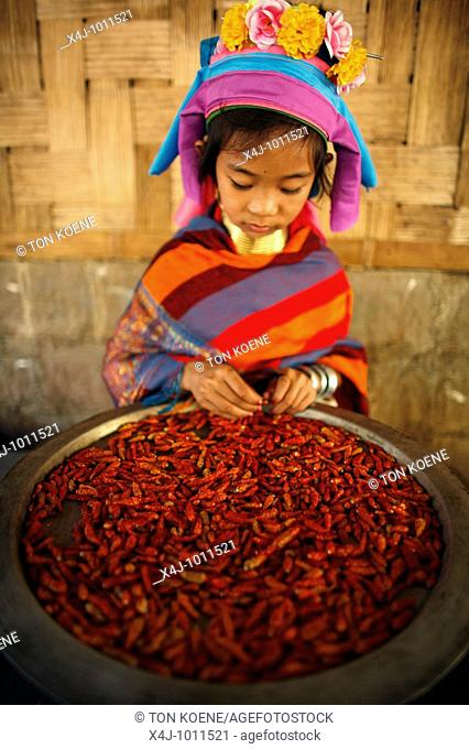 Closeup of a Longneck girl holding a bowl of chillie peppers  Approximately 300 Burmese refugees in Thailand are members of the indigenous group known as the...